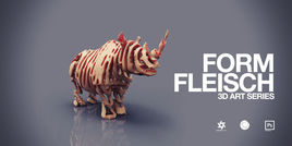 FORM FLEISCH (3D-Art Series)