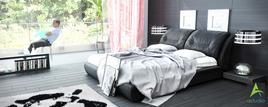 Loft Bed Room