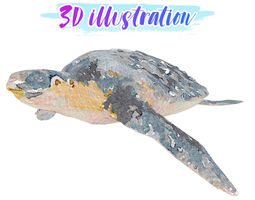 Low Poly Turtle Illustration Animated - Game 3D model