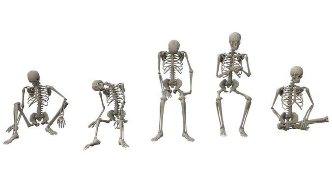 skeleton sitting poses 3d model obj mtl fbx ma mb dae tga 1