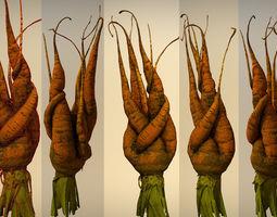 Old carrot 03 3D model