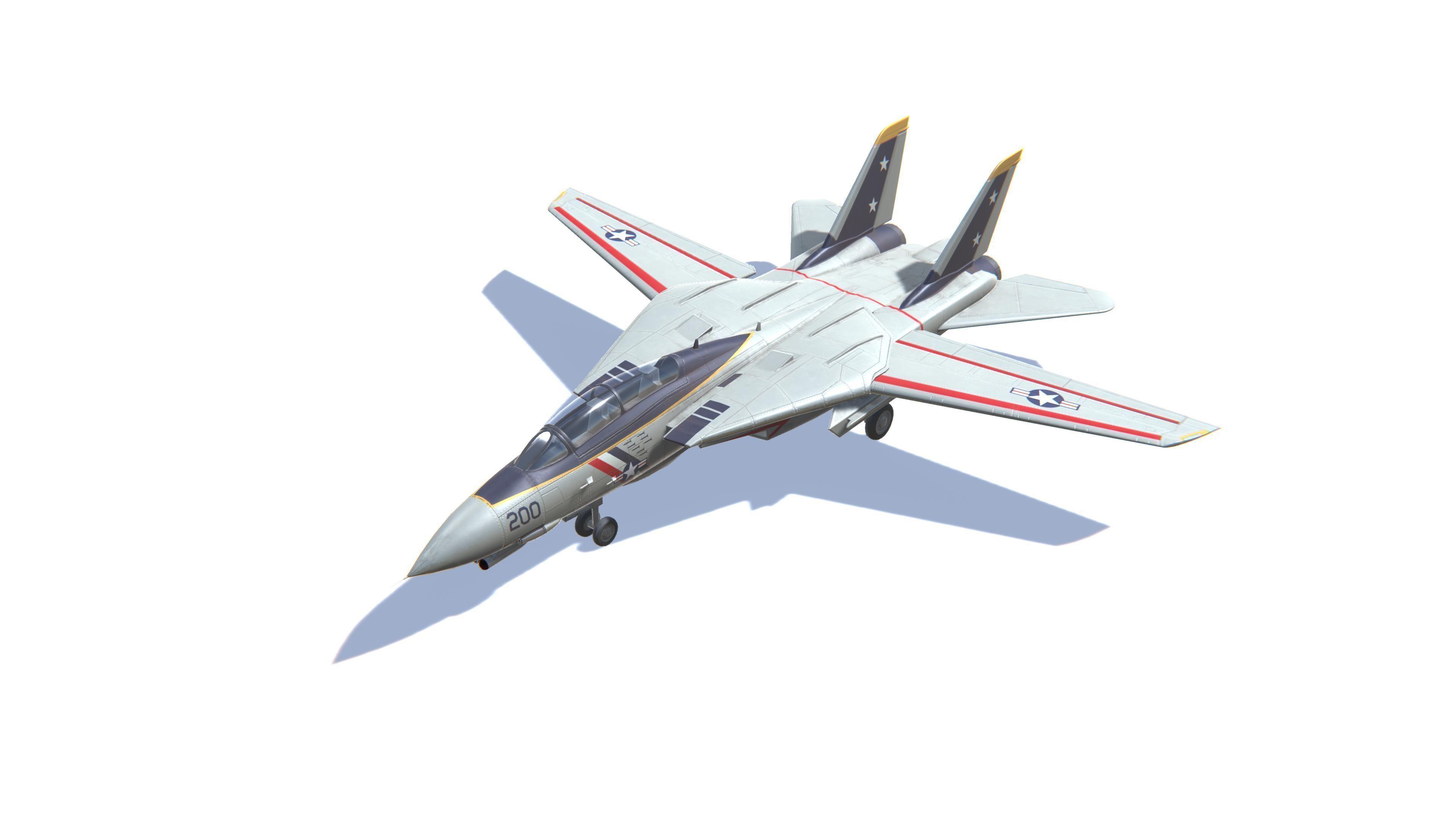 F-14 Tomcat Jet Fighter Aircraft