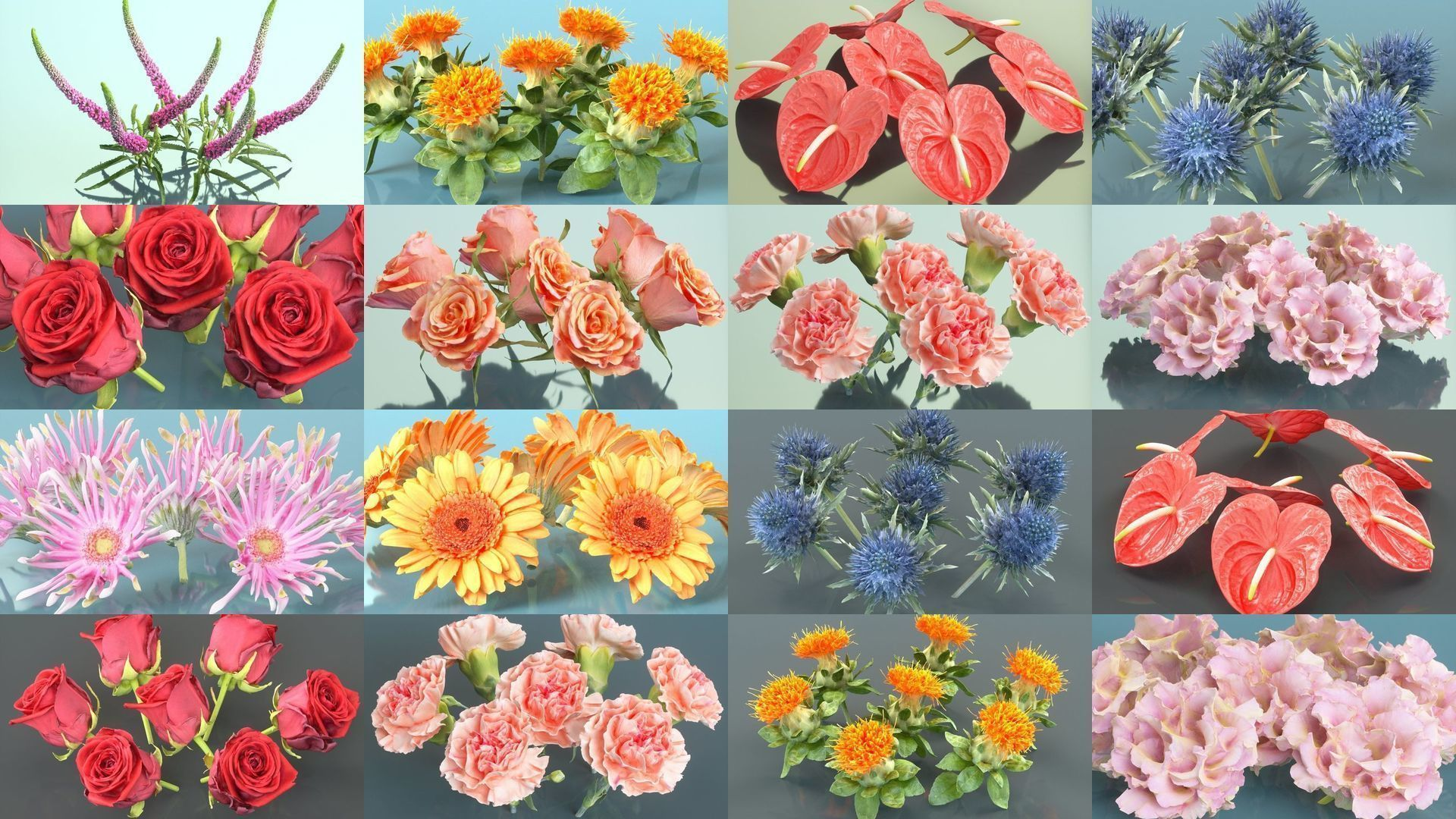 10 Flowers Collection