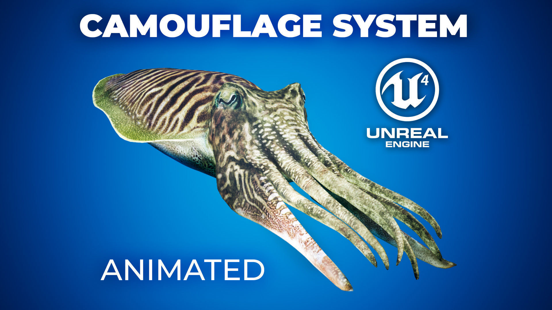 Cuttlefish Camouflage for UE4 and 3DS Octane | 3D model