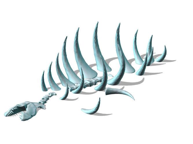 seabed animal fossil 02 3d model max obj mtl 3ds fbx tga 1