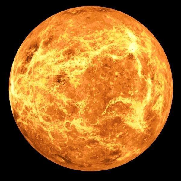 Venus Planet 3D Model