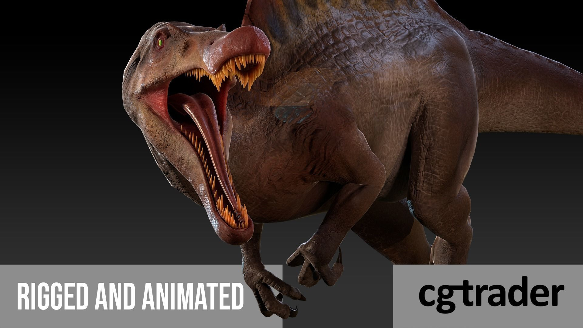 Spinosaurus For your Games or Animations Blender 3D Model