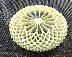 TORUS STRUCTURE SHAPE 3D printable model