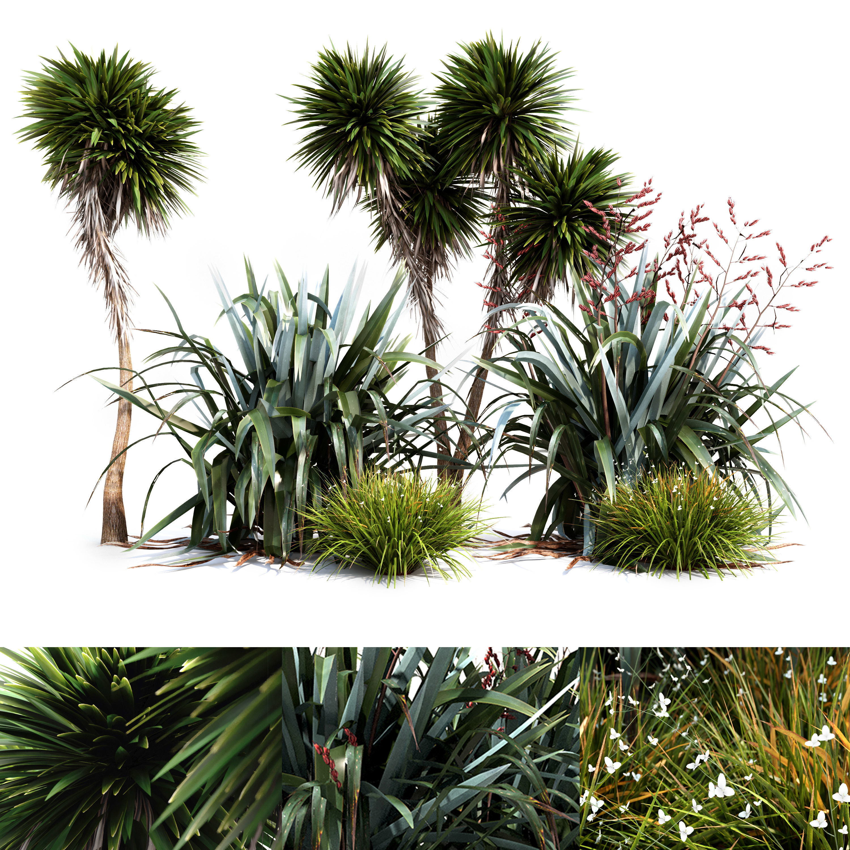 Oceania Plant Set