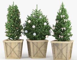 conifer Christmas tree 3D model