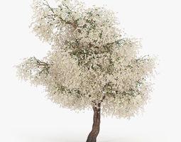Flowering Apple Tree GrowFX 3D