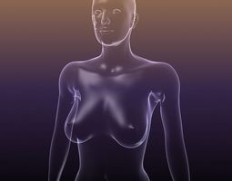 female body - silhouette of a woman 3d asset game-ready