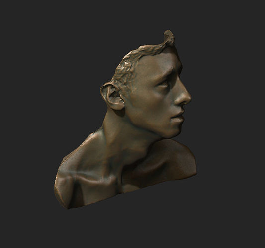 face and neck study 3d model stl 1