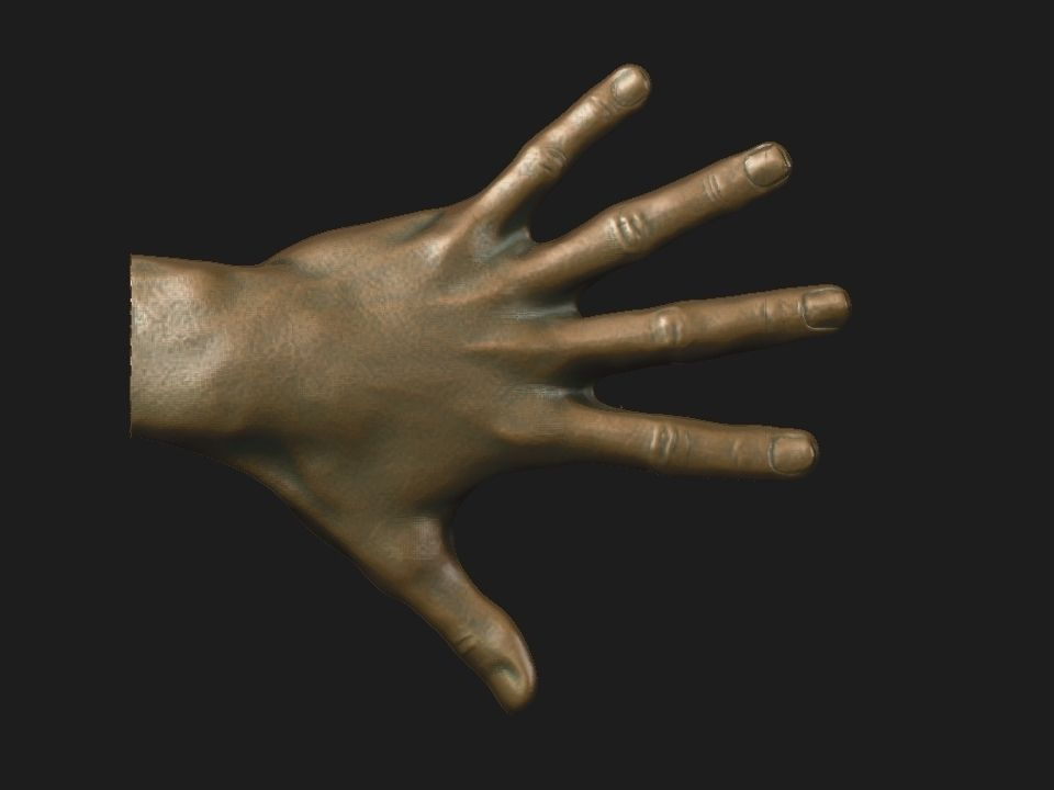 hand reference 3D print model | CGTrader