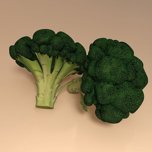 broccoli 3d model obj mtl 3ds 3dm dwg 1