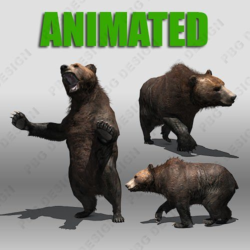 grizzly bear animated 3d model low-poly rigged animated max fbx 1