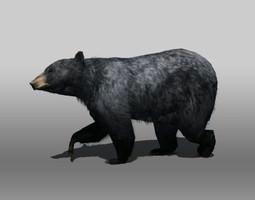 3D asset Black Bear