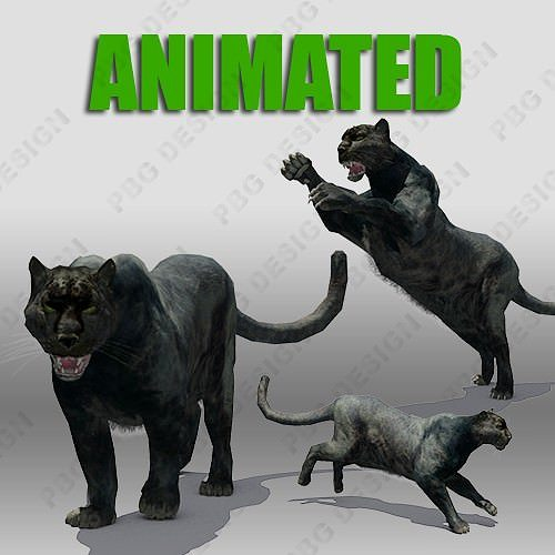 black panther animation 3d model low-poly rigged animated max fbx 1