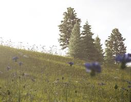 3D Meadow