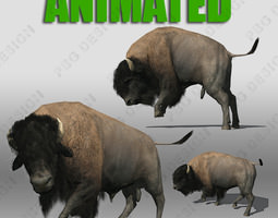 buffalo 3d model animated realtime