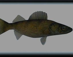 walleye 3D