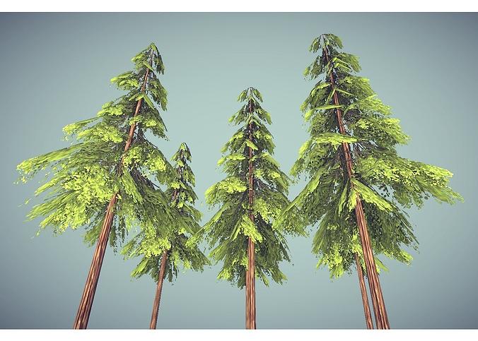 3d Model Pine Tree Cgtrader