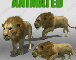 Lion Animated 3D