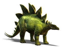 stegosaurus 3d model low-poly