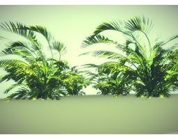 VR / AR ready 3d asset low poly jungle plant
