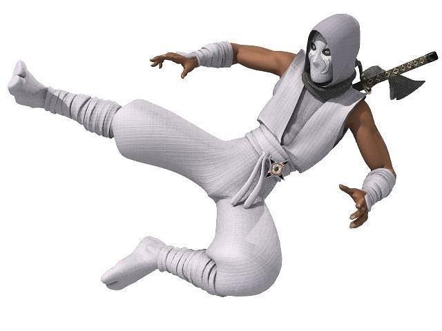 ninja rigged 3d model low-poly rigged lwo lw lws tga 1