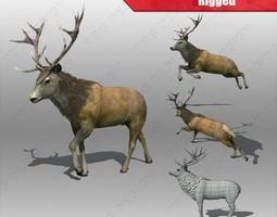 stag Deer 3D Model