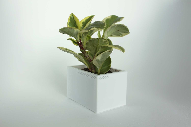 003h - Planter - Small Rectangular -