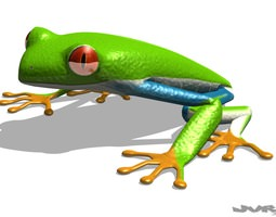 Agalychnis Callidryas - Tree frog 3D Model