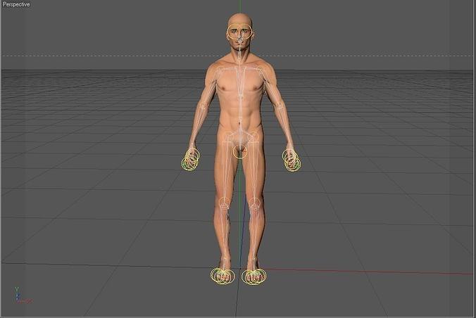 human rigged 3d model rigged max obj mtl c4d ma mb blend dae 1
