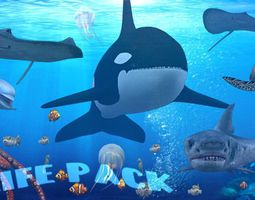 3DRT - Sealife pack 3D Model