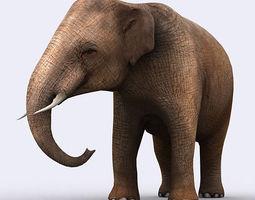 3DRT - Elephant 3D Model