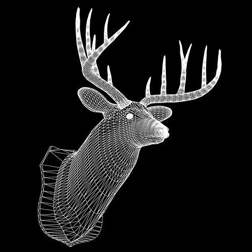 mounted deer trophy 3d model 3ds lwo lw lws 2