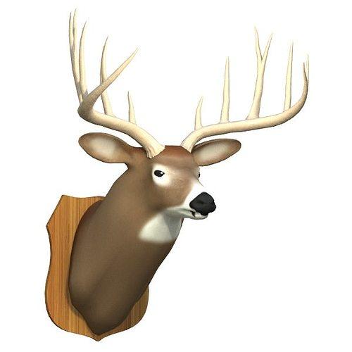 mounted deer trophy 3d model 3ds lwo lw lws 4