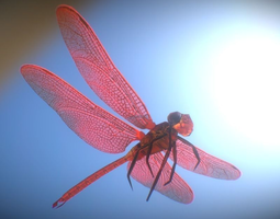 animated dragonfly 3d model game-ready