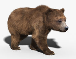 Brown Bear FUR RIGGED 3D Model