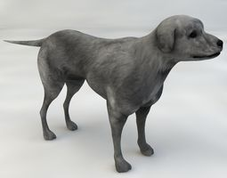 dog half-breed 3d animated