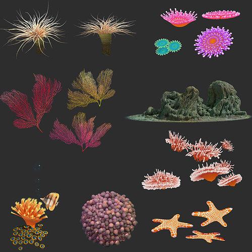 coral collection 3d model max obj mtl fbx 1