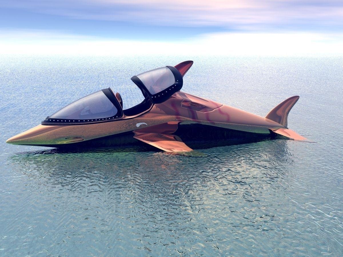 Dolphin Speed Boat
