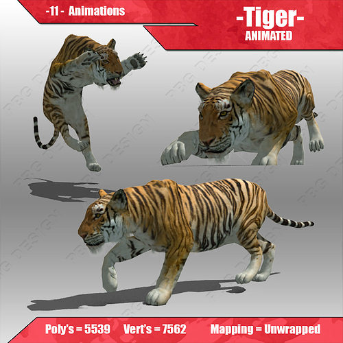 tiger animated 3d model low-poly rigged animated max fbx 1