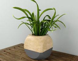 geometric plant cube 3d model