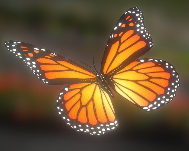 animated butterfly 3d model low-poly fbx tga 1