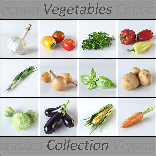 vegetables collection 3d model max obj mtl 3ds fbx mat 1
