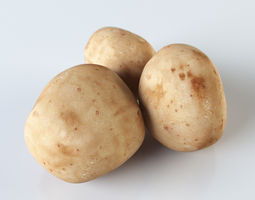 3D model Potatoes