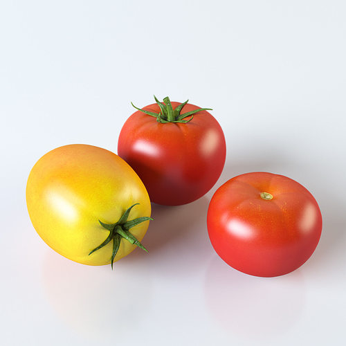 tomatoes 3d model max obj 3ds fbx stl mtl 1