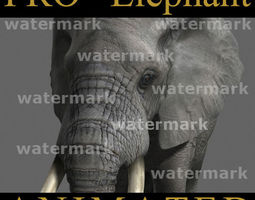 animated PRO Elephant Animated - 3d model